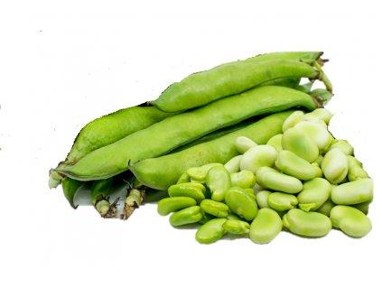 M Broad beans