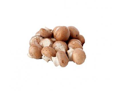 M chest mushroom