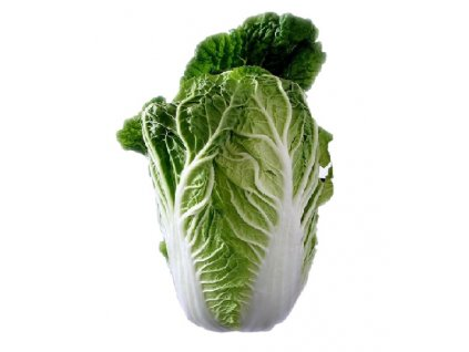 M ChineseCabbage