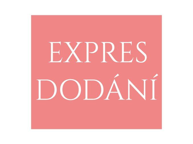 EXPRESS DODÁNÍ
