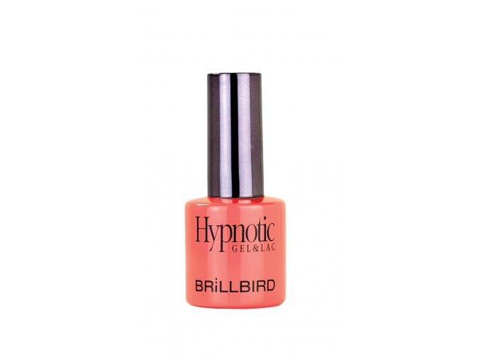 hypnotic 103