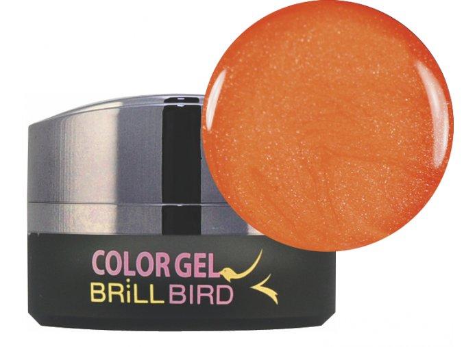 Frosty Color gel F05 5ml