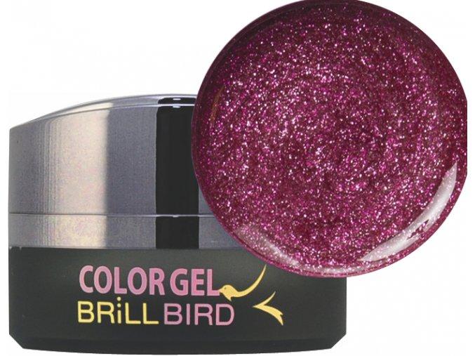 Diamond Color gel D13 5ml