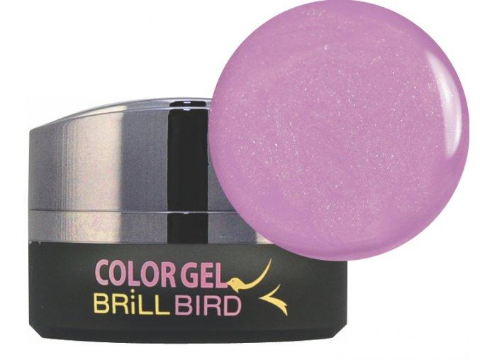 Frosty Color gel F06 5ml