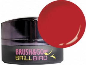 Brush&Go gel Go41 4,5ml