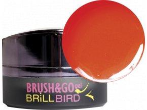 Brush&Go gel Go16