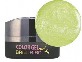 Frosty Color gel F02 5ml