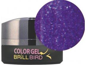 Diamond Color gel D10 5ml