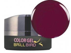 Color gel C18 5ml