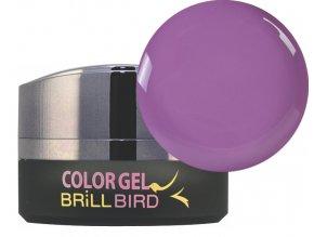 Color gel C60 5ml