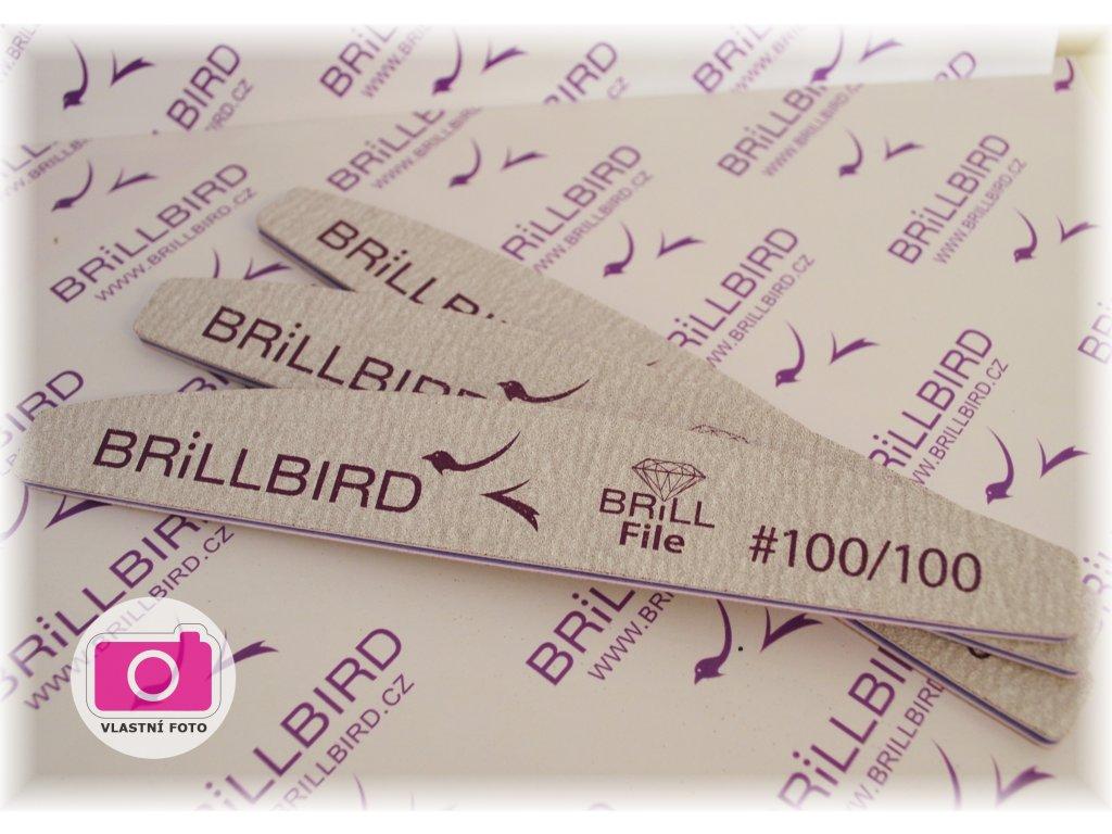 298 1 brill file 100 100 hruby