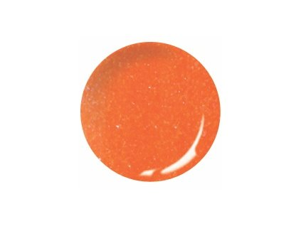Color pudr Frosty Neon F02 10ml