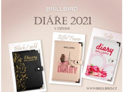banner diare2021 cz kopie