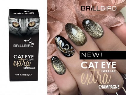 cateye champagne new