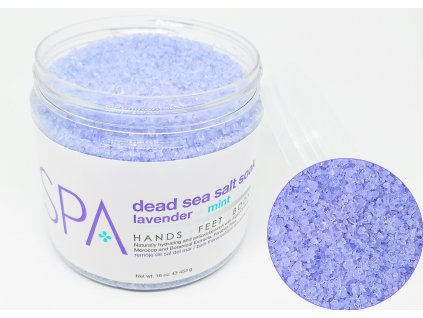 SPA53101 Salt Soak Lavender + Mint 454g