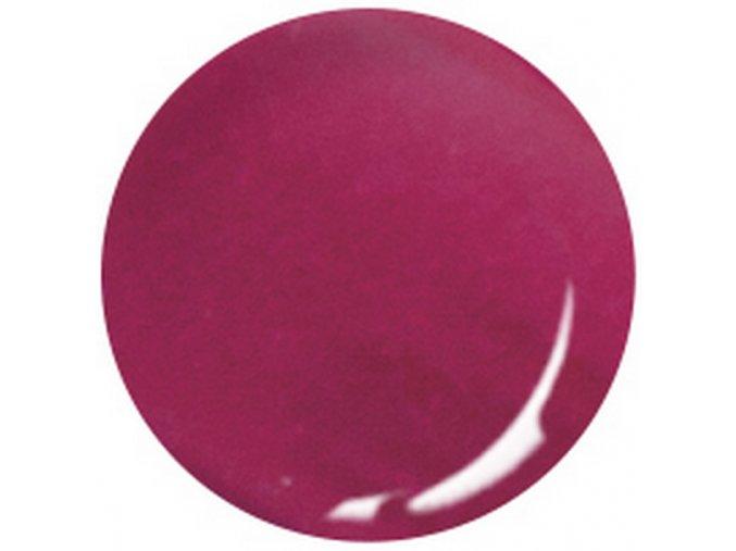 3D Color akrylový pudr C58 10ml