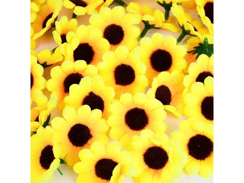 slunečnice (2)