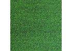 Kobercové trávy