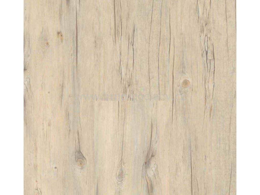 ECOLINE Click plovoucí podlaha - vinyl 9503 Borovice bílá rustikal