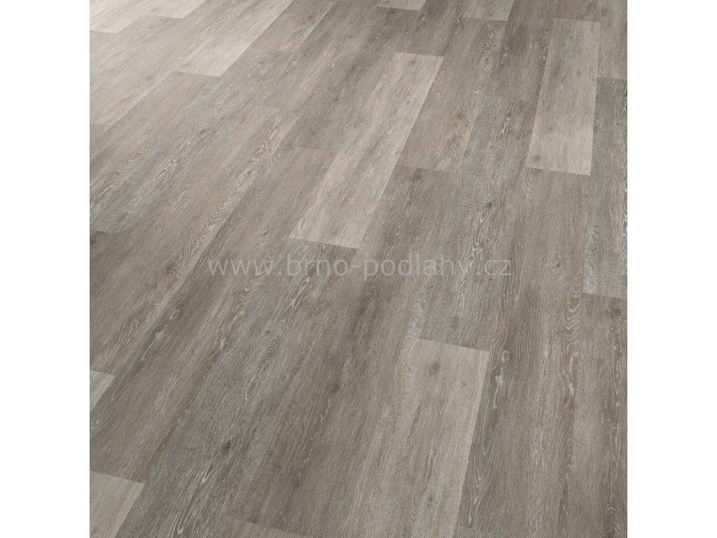 CONCEPTLINE 30107 Dub vápněný šedý - vinylová lepená podlaha