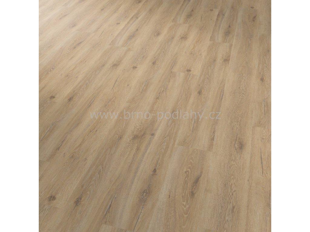 CONCEPTLINE 30111 Dub skandinávský medový - vinylová lepená podlaha