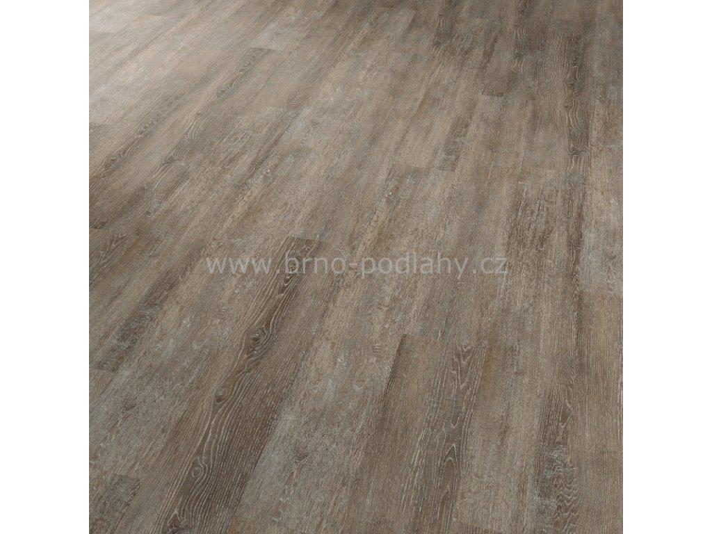 CONCEPTLINE 30106 Dub vápněný hnědý - vinylová lepená podlaha