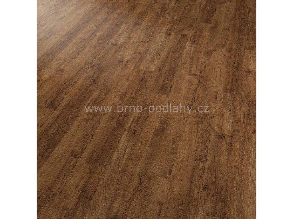 CONCEPTLINE 30115 Dub rustikal zlatý - vinylová lepená podlaha
