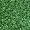 Kobercová tráva TROPIK 5469