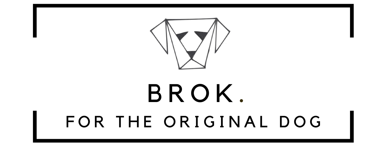 BROK FOR THE ORIGINAL DOG