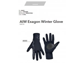 NALINI Rukavice AIW Exagon Winter Gloves 2019