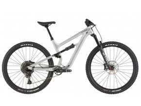21 CANNONDALE HABIT WAVES (C23451M10/SLV)