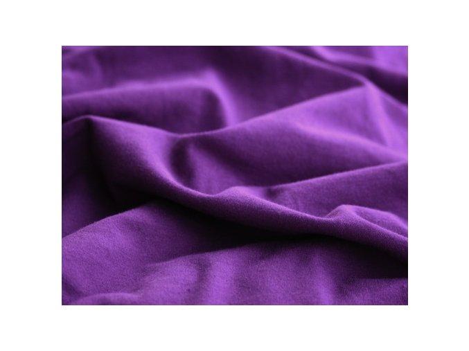 Liliputi fialový