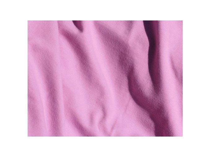 Liliputi růžový