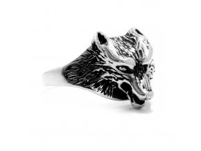 S2760 Prsten z chirurgické oceli VLK