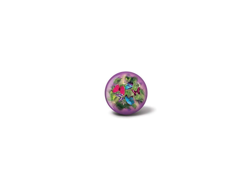60 400526 Viz A Ball Butterflies Front sml.png