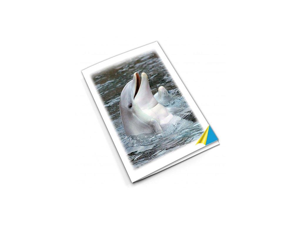 PN56 delfín titlstr 3Ds