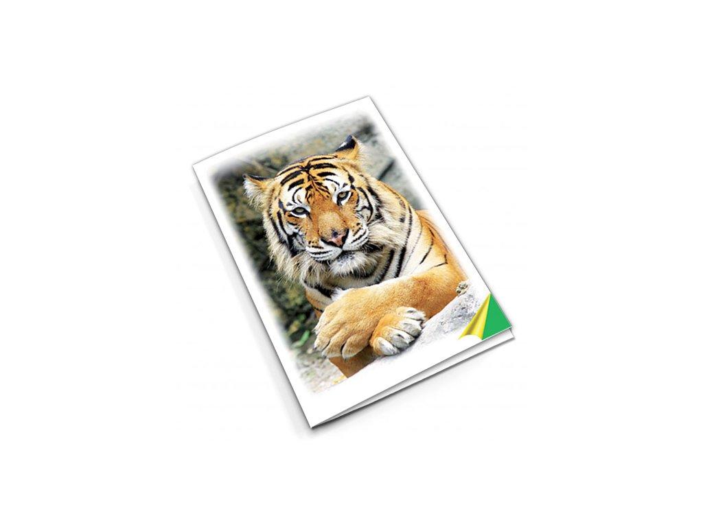 PN53 tygr titlstr 3Ds