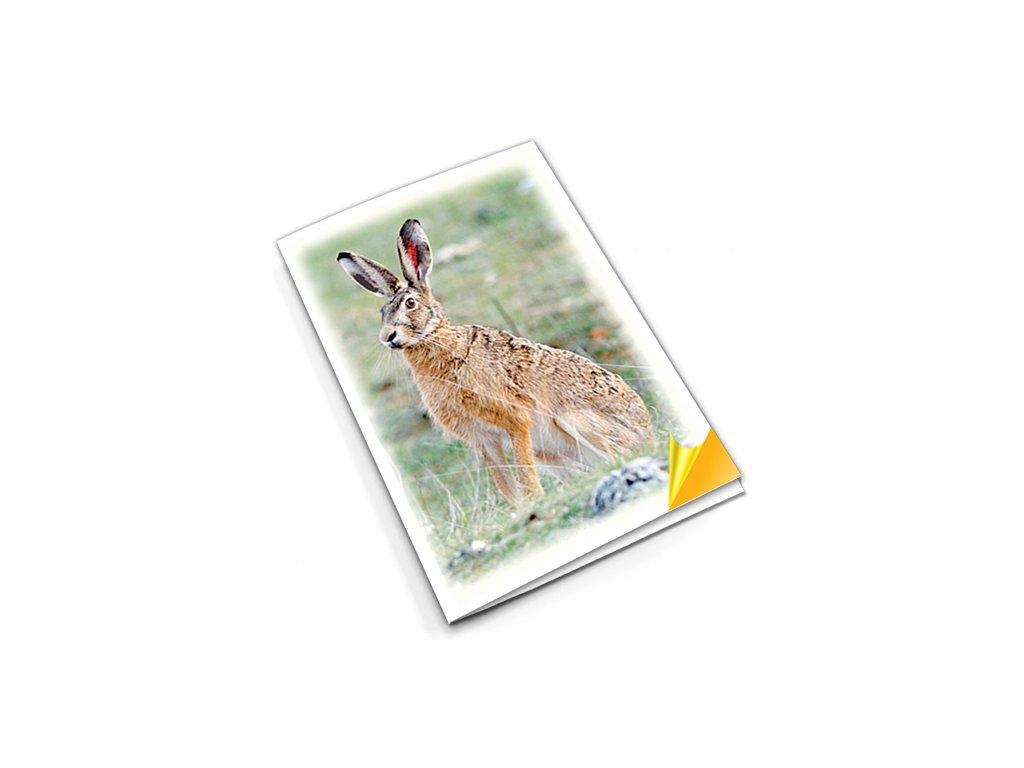 PN50 králík titlstr 3Ds