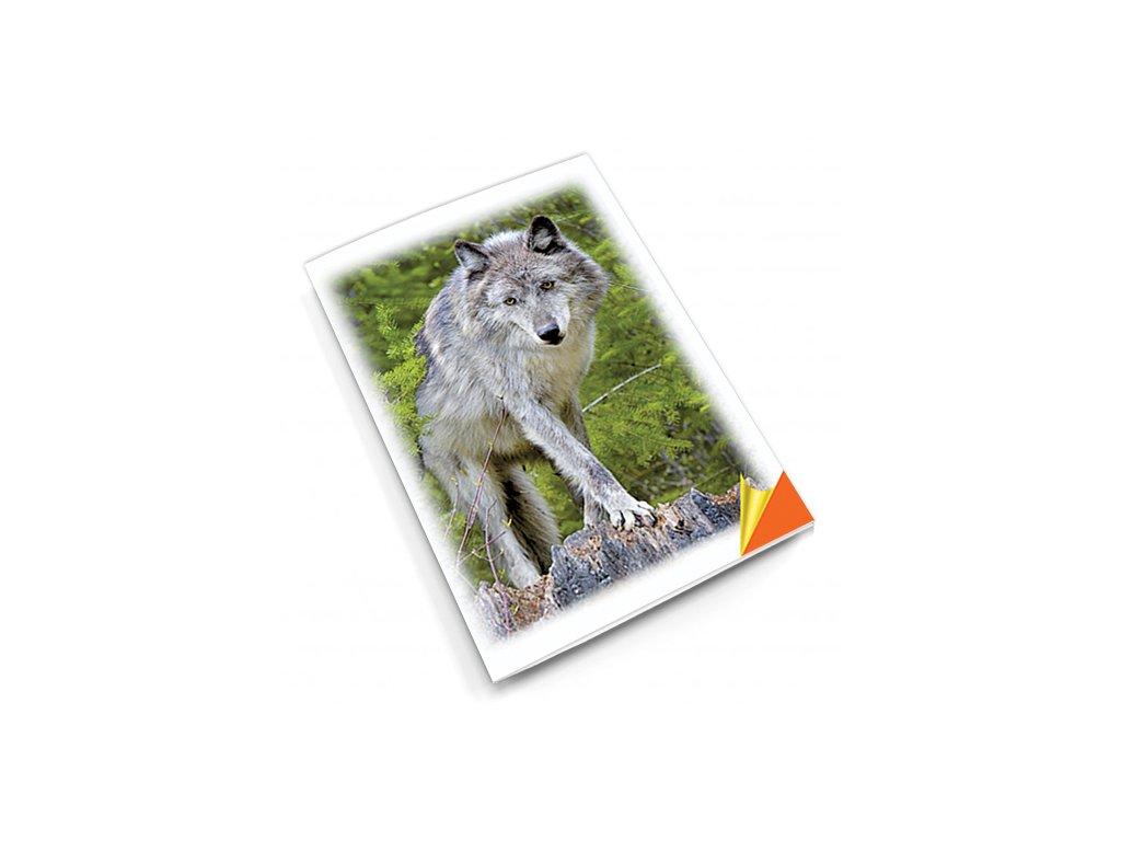 PN37 vlk titlstr 3Ds