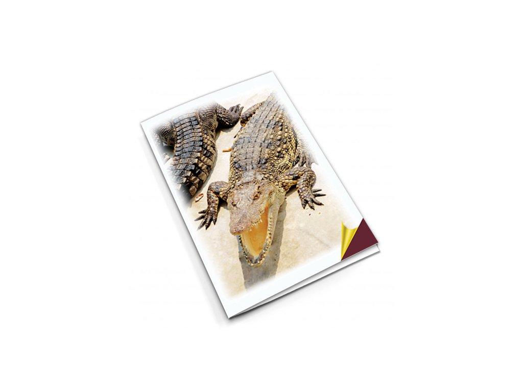 PN35 krokodýl titlstr 3Ds