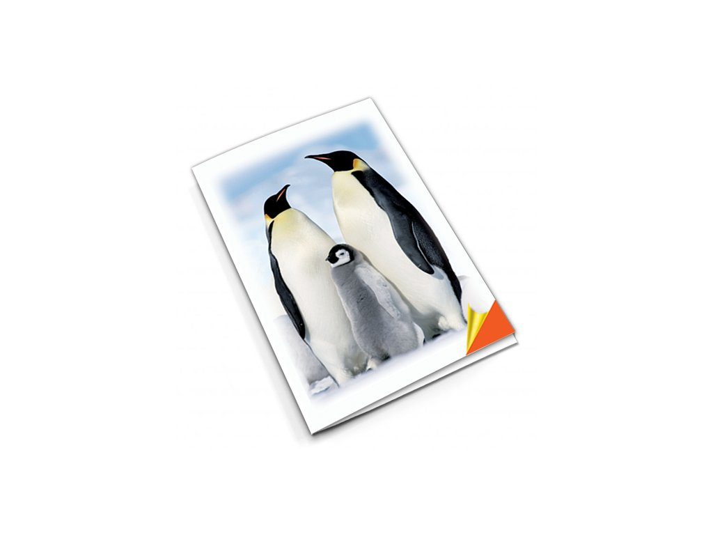PN34 tučňák titlstr 3Ds