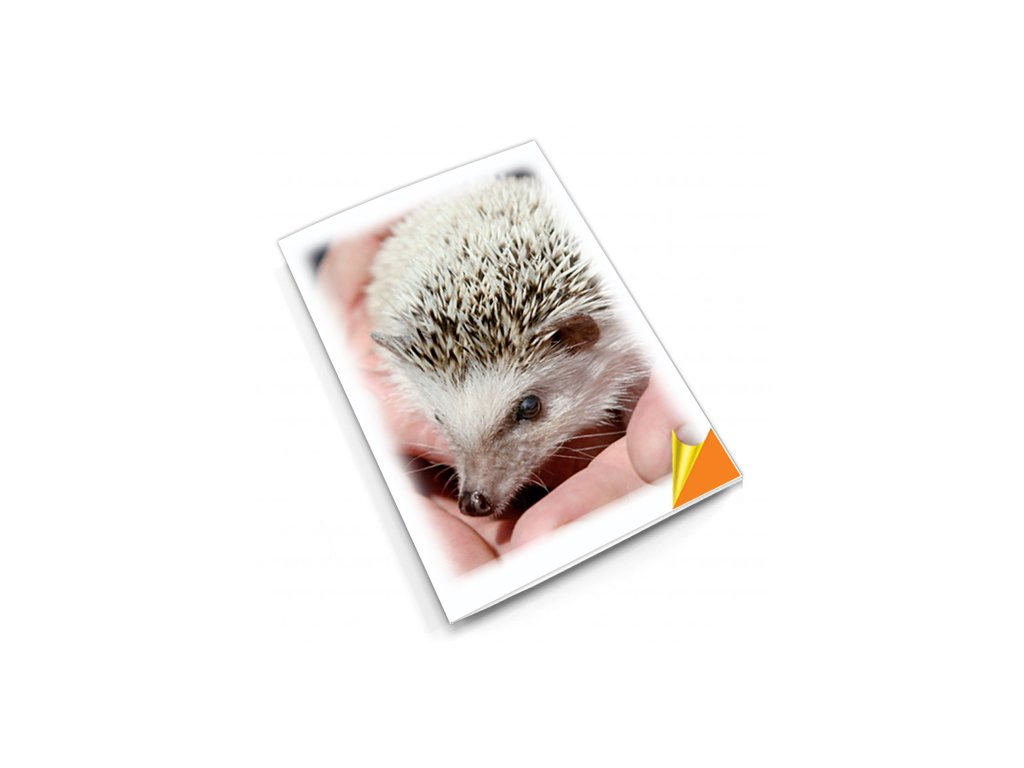 PN21 ježek titlstr 3Ds