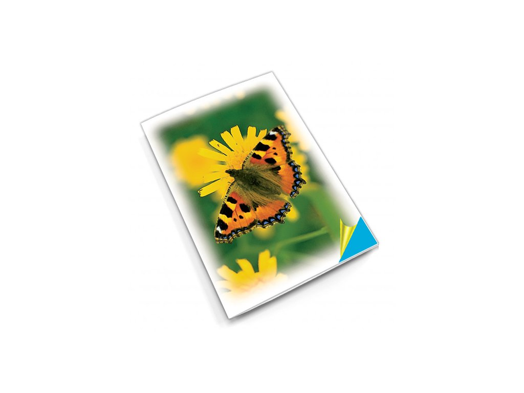 PN15 motýl titlstr 3Ds
