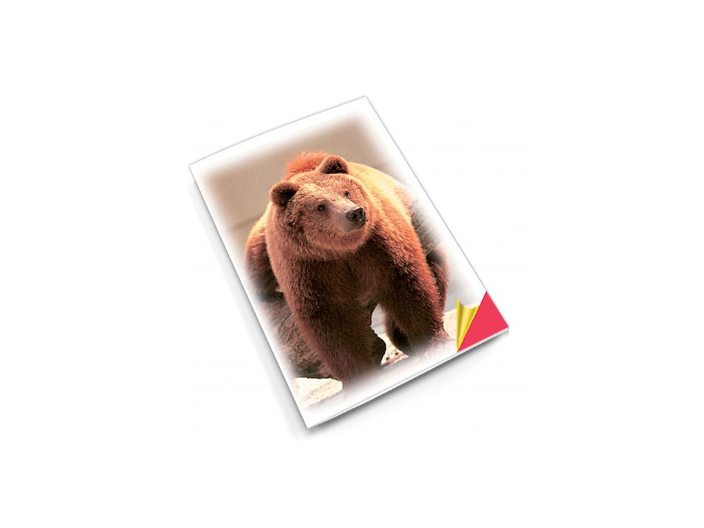 PN14 medvěd titlstr 3Ds