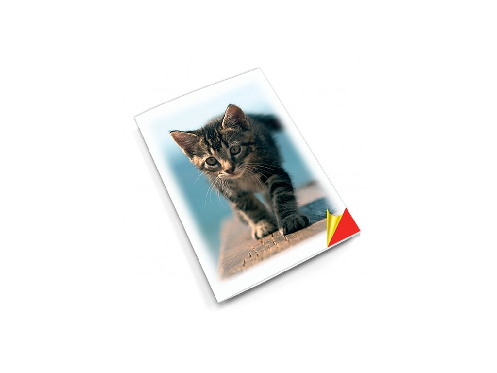PN1 kočka titlstr 3Ds