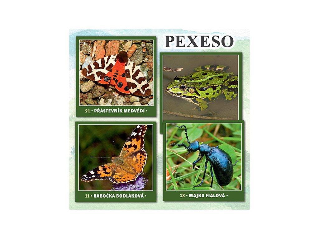 PX109 pexeso biologická rozmanitost REKLAMA