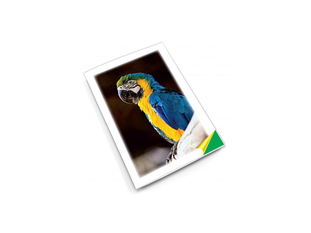 PN12 papouch titlstr 3Ds