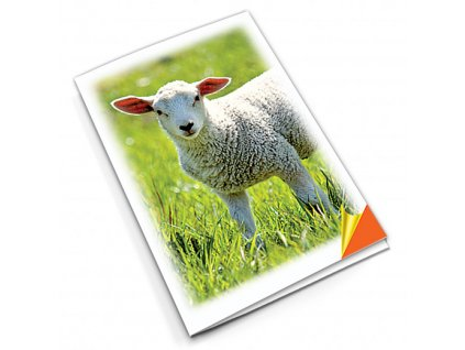 PN8 ovce titlstr 3Ds