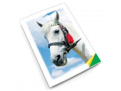 PN5 kůň titlstr 3Ds