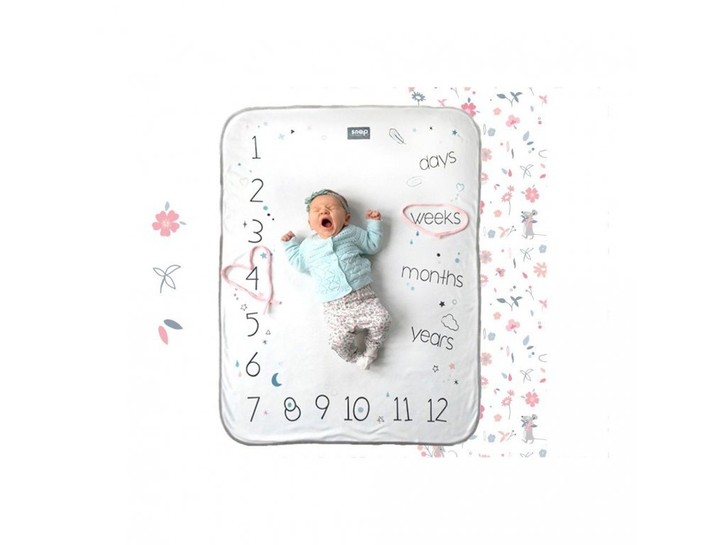 snap the moment foto blanket english version rosy white